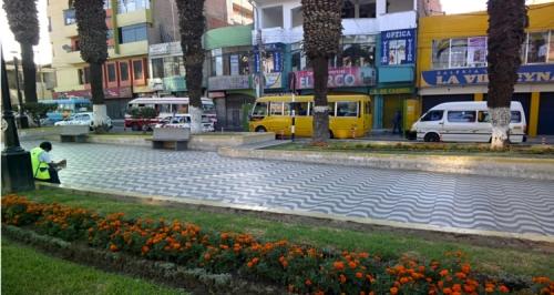 Tacna-Buses